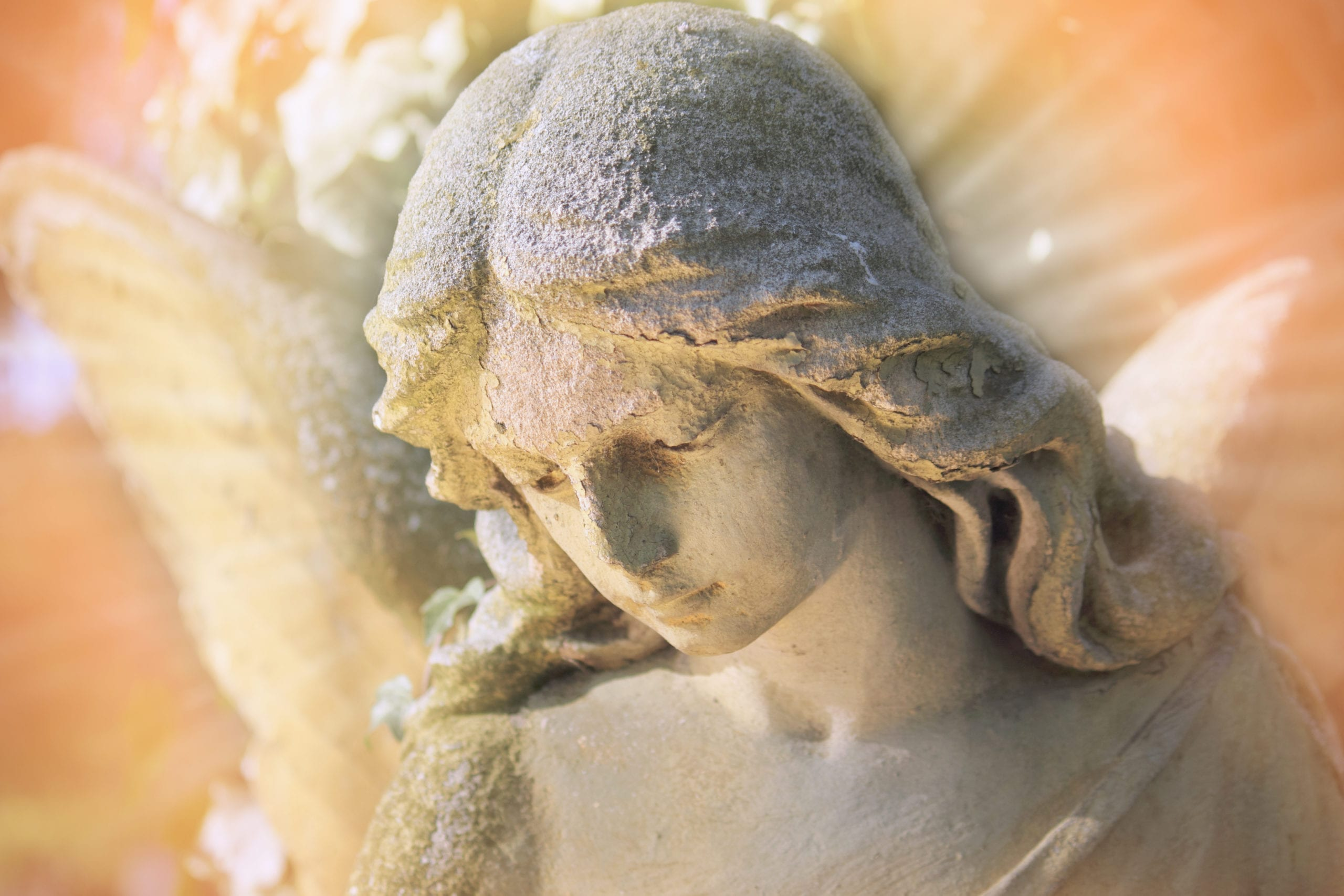 Fascinating Myths about Funerals | Clear Cremation